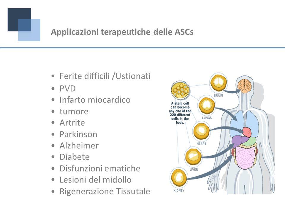 Applicazioni terapeutiche delle ASCs