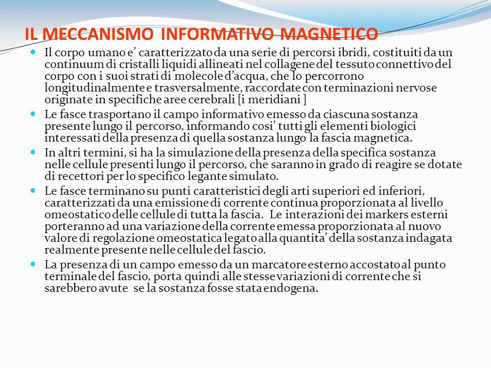 IL MECCANISMO INFORMATIVO MAGNETICO