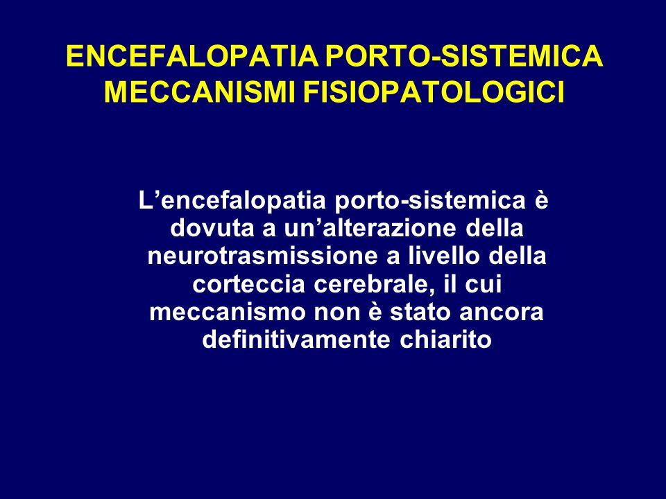 ENCEFALOPATIA PORTO-SISTEMICA MECCANISMI FISIOPATOLOGICI
