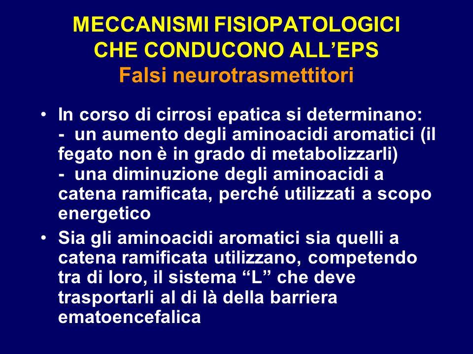 MECCANISMI FISIOPATOLOGICI CHE CONDUCONO ALL'EPS Falsi neurotrasmettitori