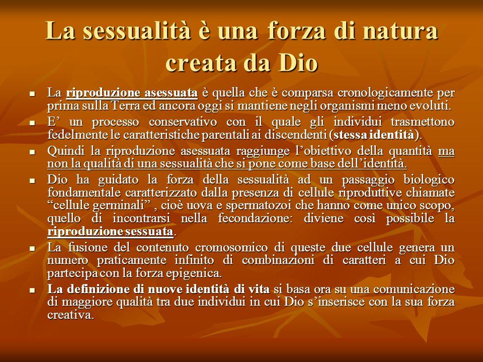 La sessualità è una forza di natura creata da Dio