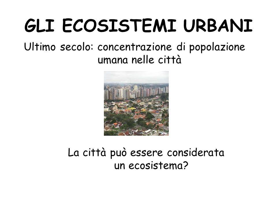 GLI ECOSISTEMI URBANI Ultimo secolo: concentrazione di popolazione umana nelle città.