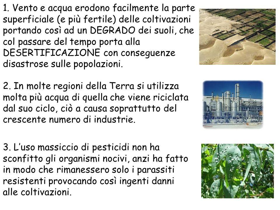 1. Vento e acqua erodono facilmente la parte superficiale (e più fertile) delle coltivazioni portando così ad un DEGRADO dei suoli, che col passare del tempo porta alla DESERTIFICAZIONE con conseguenze disastrose sulle popolazioni.