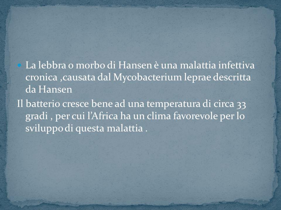 La lebbra o morbo di Hansen è una malattia infettiva cronica ,causata dal Mycobacterium leprae descritta da Hansen