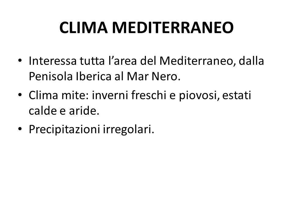 CLIMA MEDITERRANEO Interessa tutta l'area del Mediterraneo, dalla Penisola Iberica al Mar Nero.