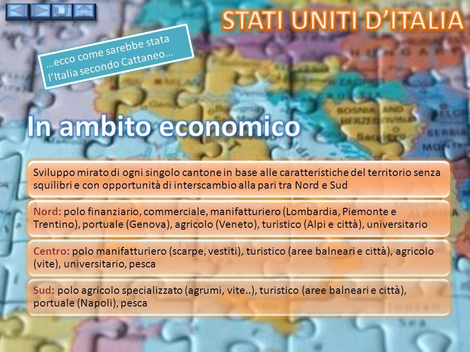 In ambito economico Stati uniti d'italia