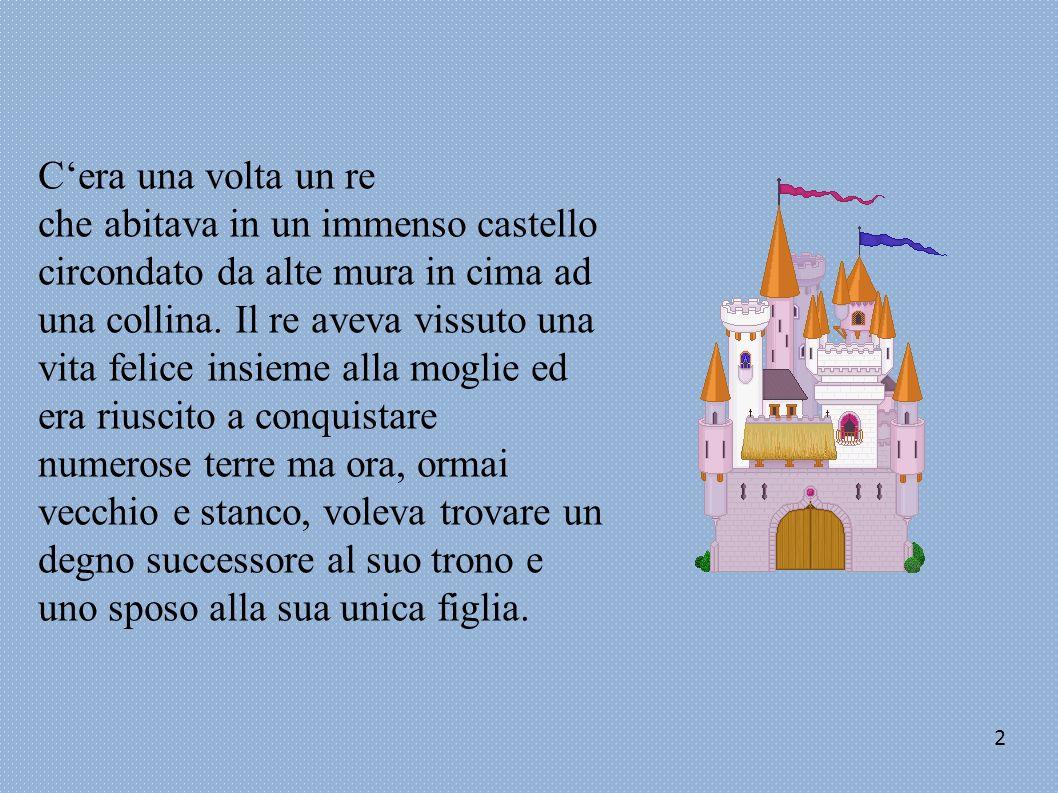 C'era una volta un re che abitava in un immenso castello circondato da alte mura in cima ad una collina. Il re aveva vissuto una vita felice insieme alla moglie ed era riuscito a conquistare numerose terre ma ora, ormai vecchio e stanco, voleva trovare un degno successore al suo trono e uno sposo alla sua unica figlia.