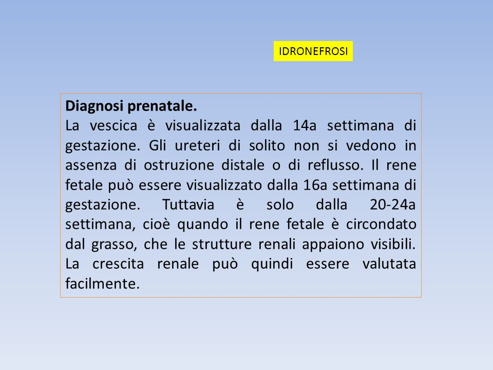 IDRONEFROSI Diagnosi prenatale.