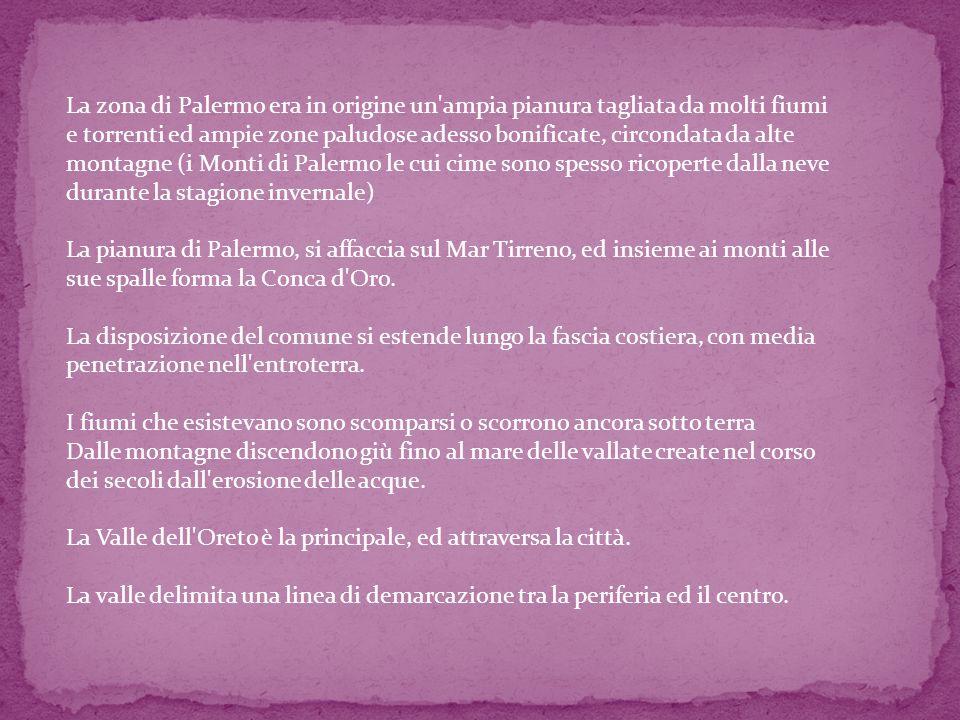La zona di Palermo era in origine un ampia pianura tagliata da molti fiumi e torrenti ed ampie zone paludose adesso bonificate, circondata da alte montagne (i Monti di Palermo le cui cime sono spesso ricoperte dalla neve durante la stagione invernale)