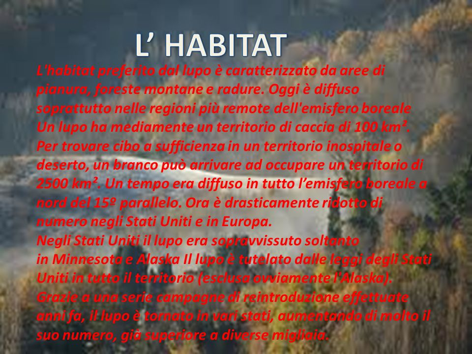 L' HABITAT