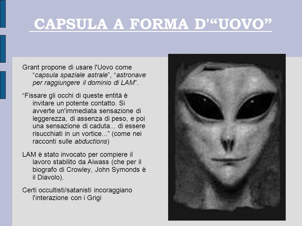 CAPSULA A FORMA D UOVO