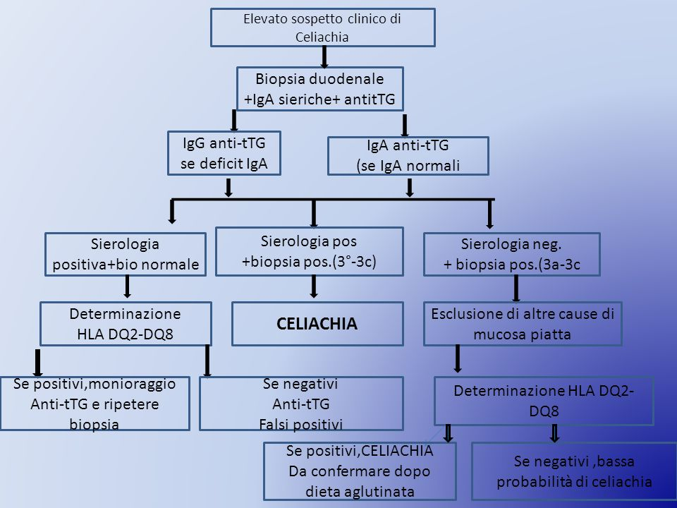 CELIACHIA Biopsia duodenale +IgA sieriche+ antitTG
