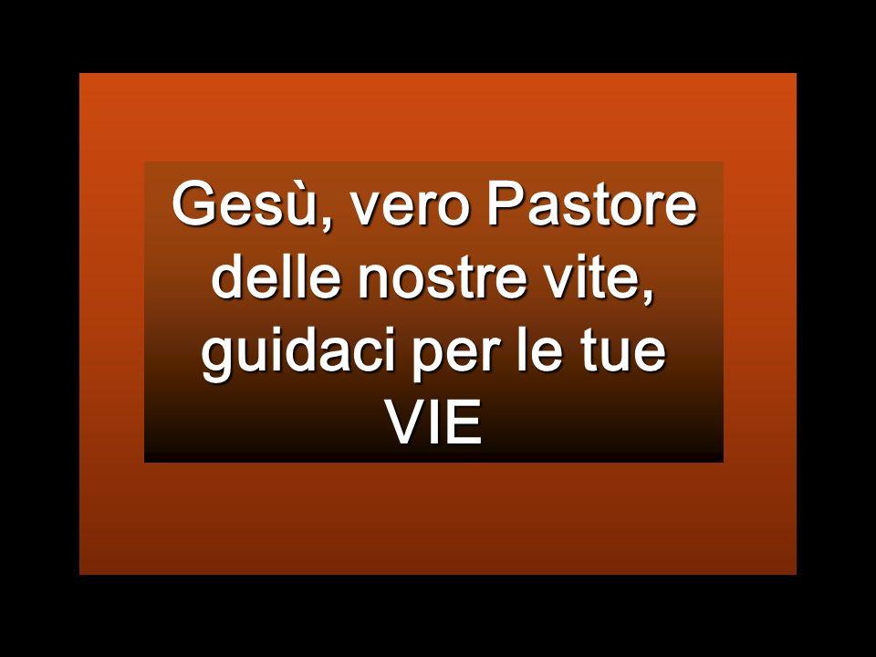 Gesù, vero Pastore delle nostre vite, guidaci per le tue VIE