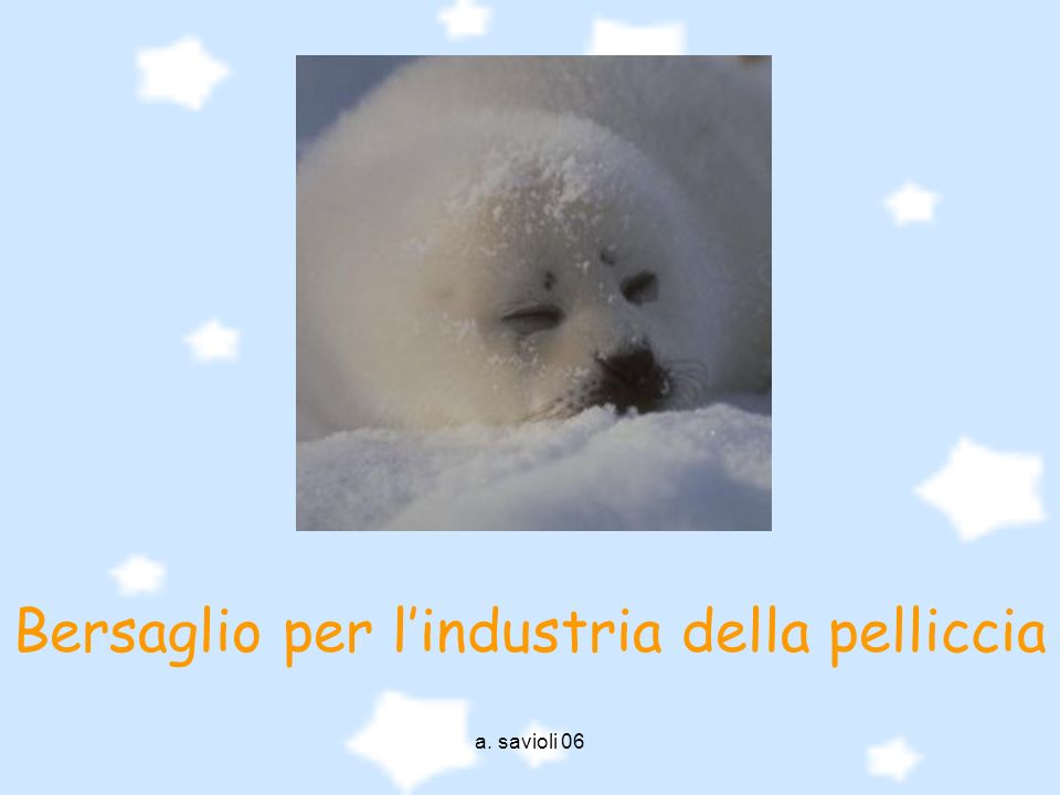 Bersaglio per l'industria della pelliccia