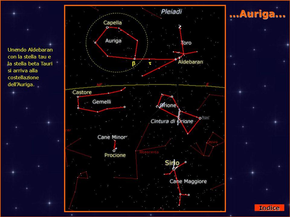 Orione Indice Oltre all Orsa Maggiore abbiamo