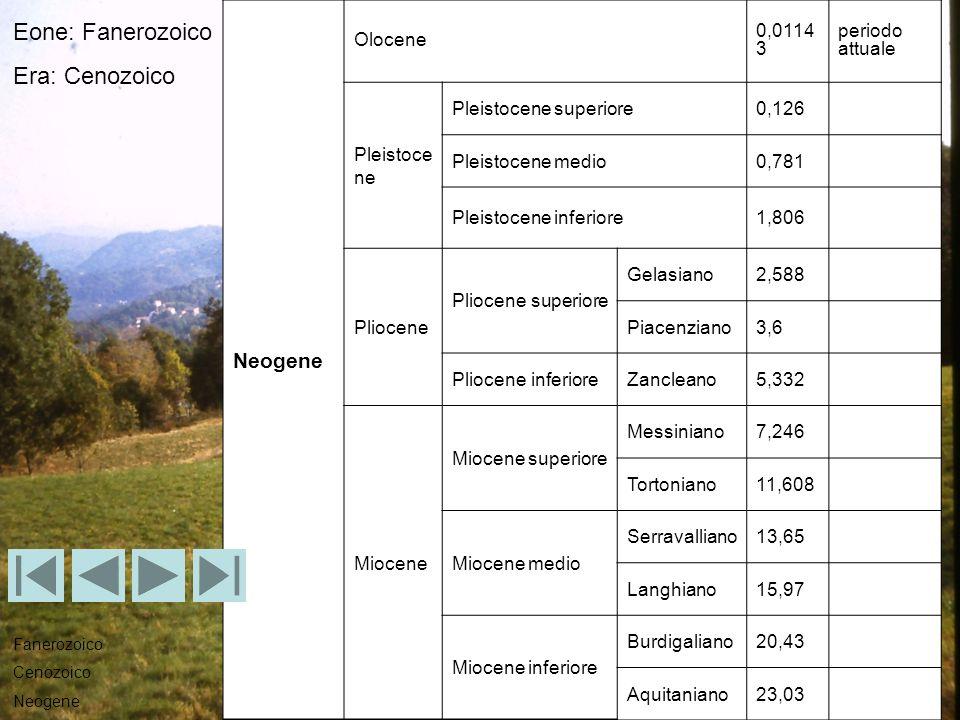 Eone: Fanerozoico Era: Cenozoico Neogene Olocene 0,01143