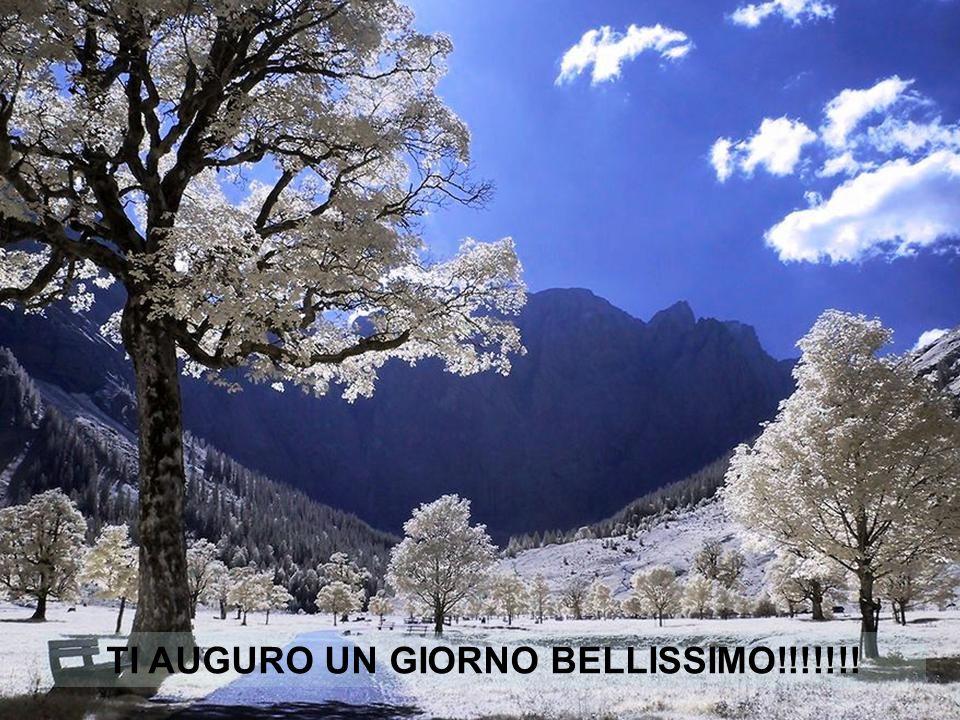 TI AUGURO UN GIORNO BELLISSIMO!!!!!!!