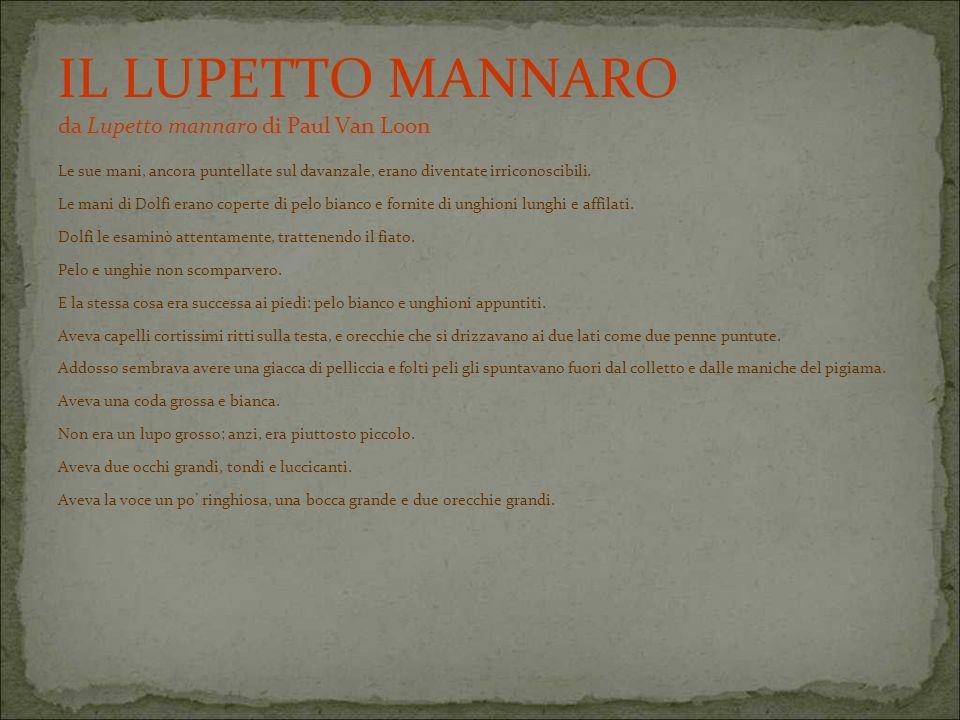 IL LUPETTO MANNARO da Lupetto mannaro di Paul Van Loon