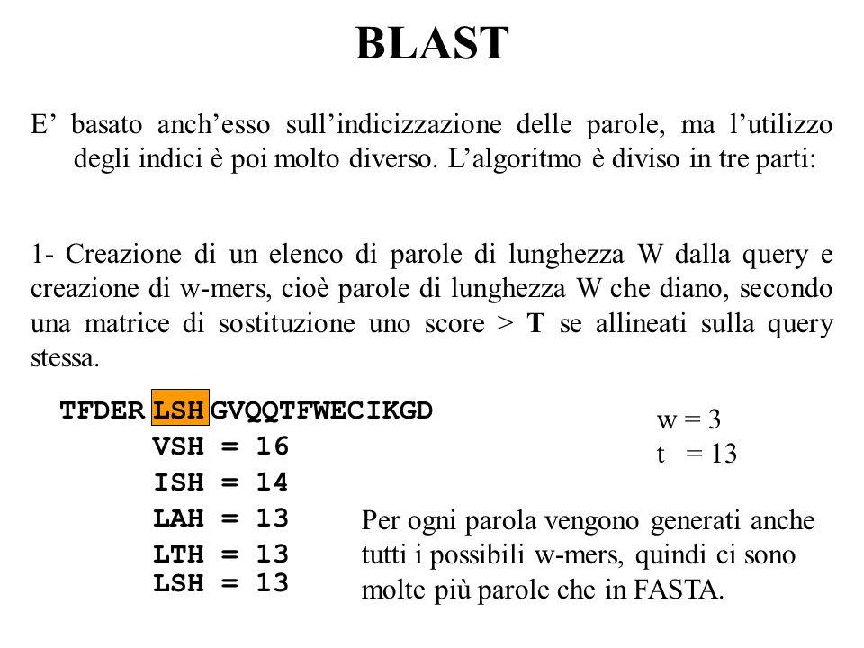 BLAST E' basato anch'esso sull'indicizzazione delle parole, ma l'utilizzo degli indici è poi molto diverso. L'algoritmo è diviso in tre parti: