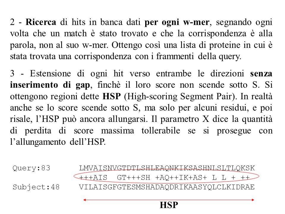 2 - Ricerca di hits in banca dati per ogni w-mer, segnando ogni volta che un match è stato trovato e che la corrispondenza è alla parola, non al suo w-mer. Ottengo così una lista di proteine in cui è stata trovata una corrispondenza con i frammenti della query.