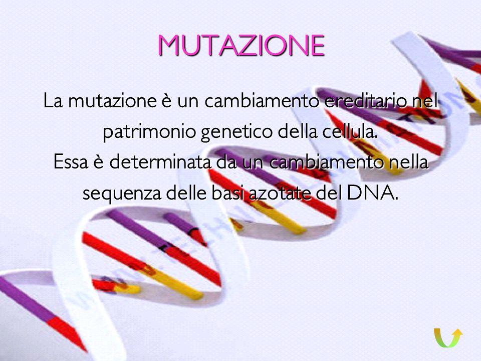 MUTAZIONE La mutazione è un cambiamento ereditario nel