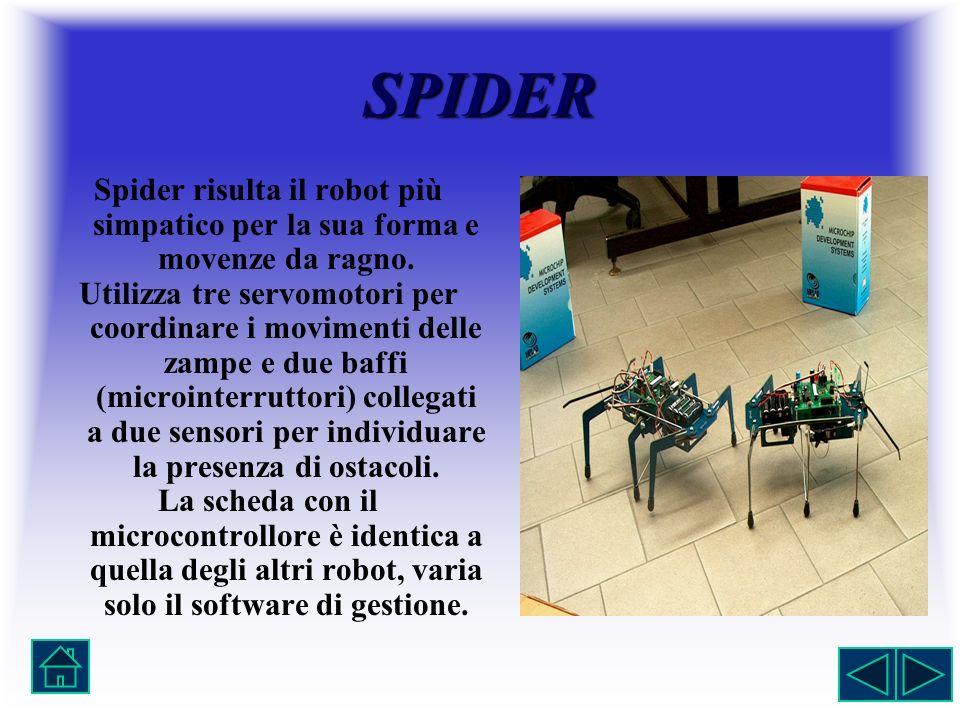 SPIDER Spider risulta il robot più simpatico per la sua forma e movenze da ragno.