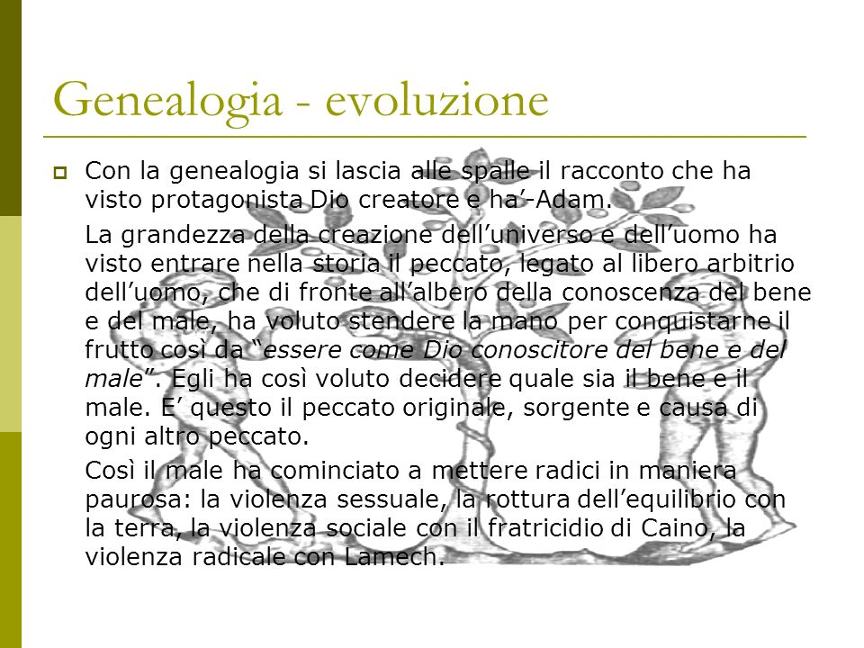 Genealogia - evoluzione