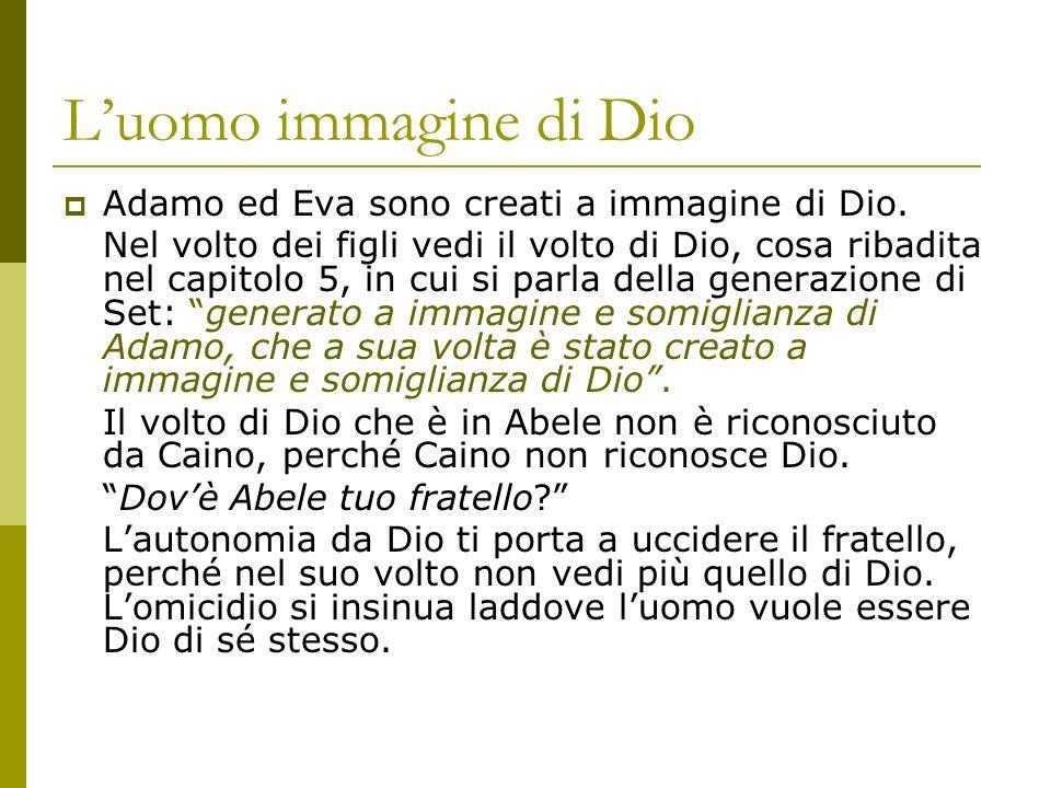 L'uomo immagine di Dio Adamo ed Eva sono creati a immagine di Dio.