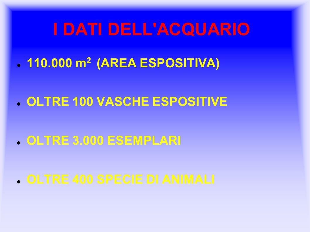 I DATI DELL ACQUARIO 110.000 m2 (AREA ESPOSITIVA)