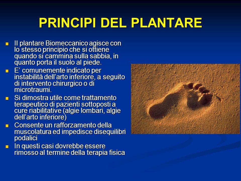 PRINCIPI DEL PLANTARE