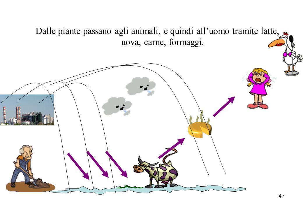 Dalle piante passano agli animali, e quindi all'uomo tramite latte, uova, carne, formaggi.