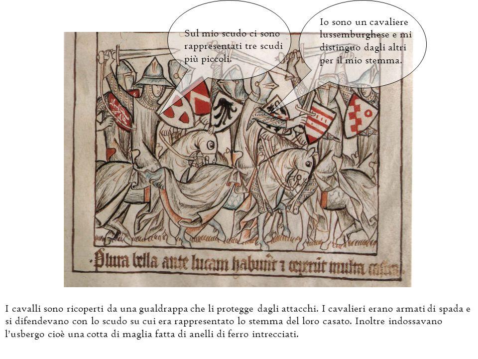 Io sono un cavaliere lussemburghese e mi. distinguo dagli altri. per il mio stemma. Sul mio scudo ci sono.