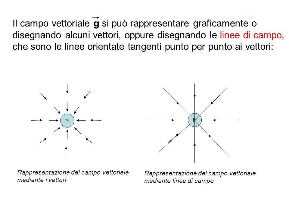 Il campo vettoriale g si può rappresentare graficamente o
