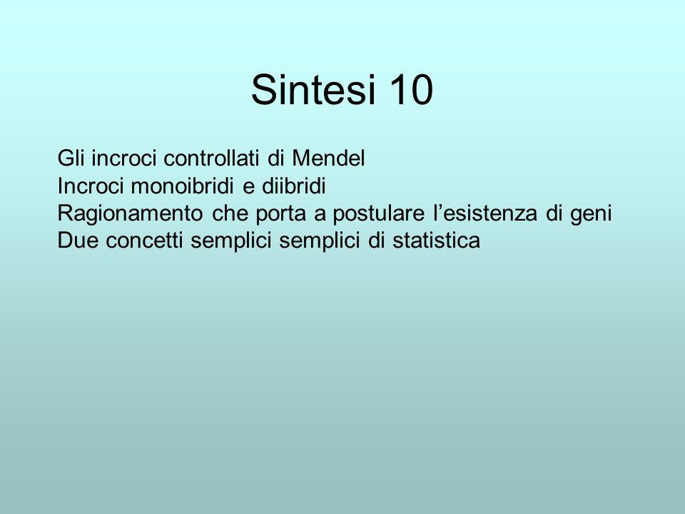 Sintesi 10 Gli incroci controllati di Mendel