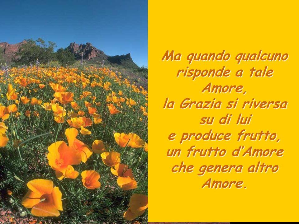Ma quando qualcuno risponde a tale Amore, la Grazia si riversa su di lui e produce frutto, un frutto d'Amore che genera altro Amore.