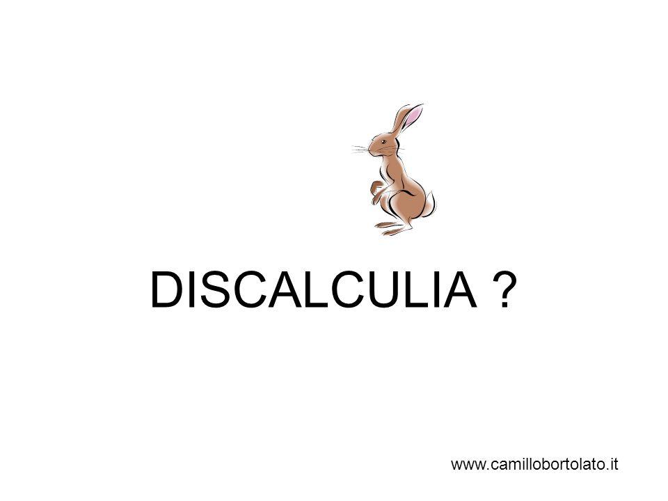 DISCALCULIA www.camillobortolato.it