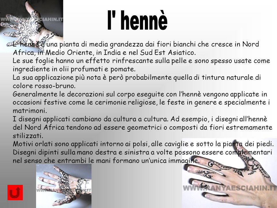 l hennè