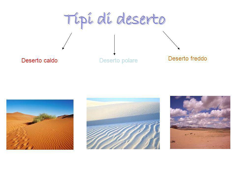 Tipi di deserto Deserto freddo Deserto caldo Deserto polare