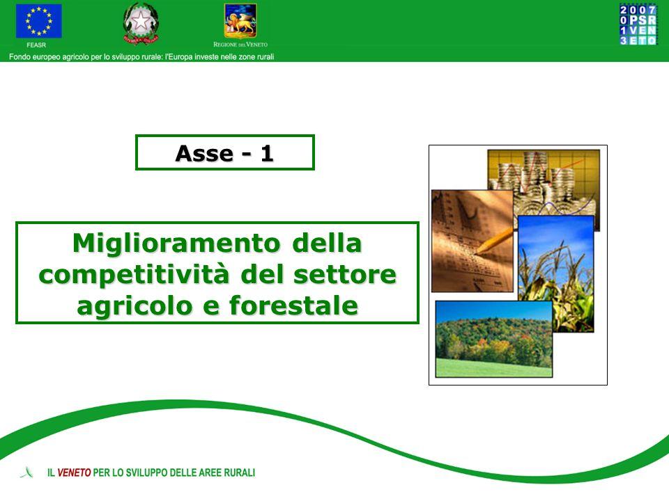 Miglioramento della competitività del settore agricolo e forestale