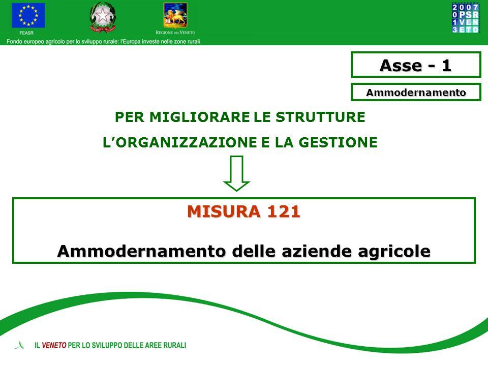Asse - 1 MISURA 121 Ammodernamento delle aziende agricole