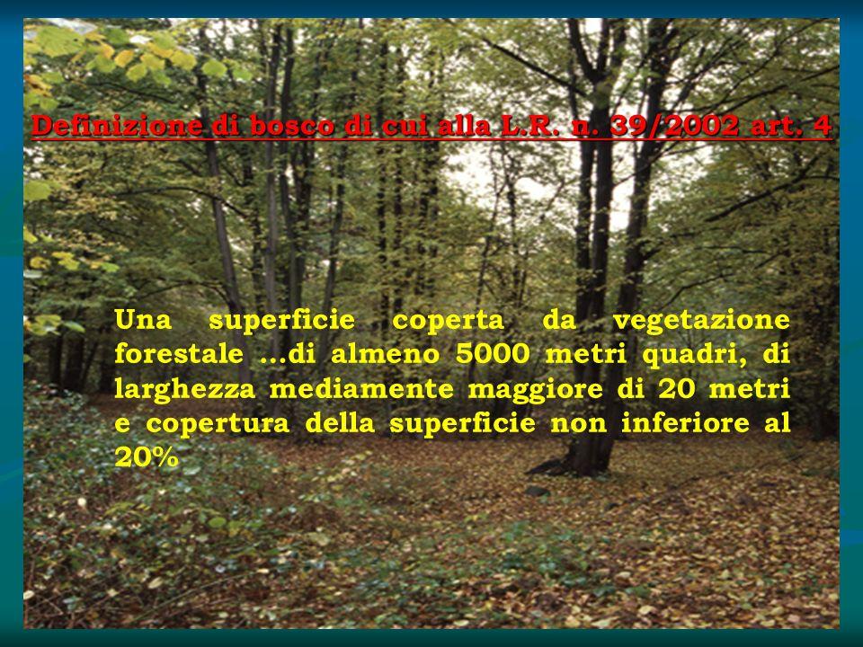 Definizione di bosco di cui alla L.R. n. 39/2002 art. 4