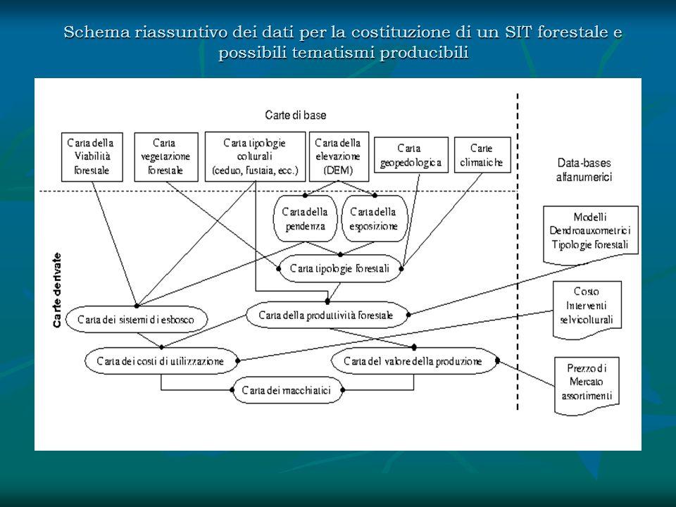 Schema riassuntivo dei dati per la costituzione di un SIT forestale e possibili tematismi producibili