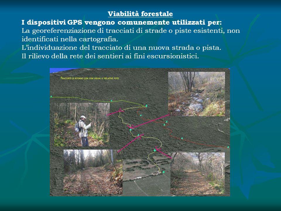 Viabilità forestale I dispositivi GPS vengono comunemente utilizzati per:
