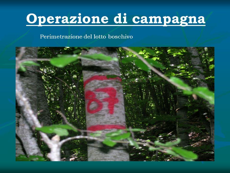 Operazione di campagna
