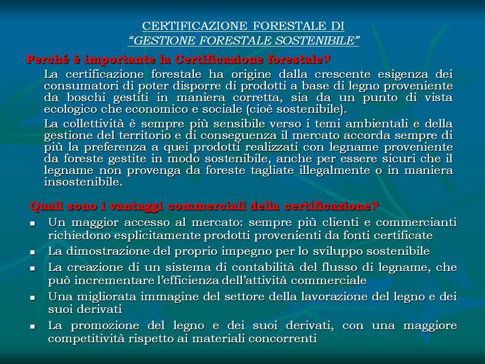 CERTIFICAZIONE FORESTALE DI GESTIONE FORESTALE SOSTENIBILE