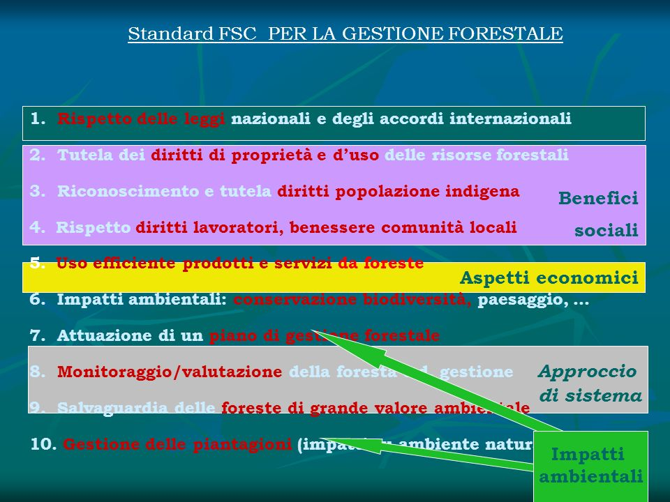 Standard FSC PER LA GESTIONE FORESTALE
