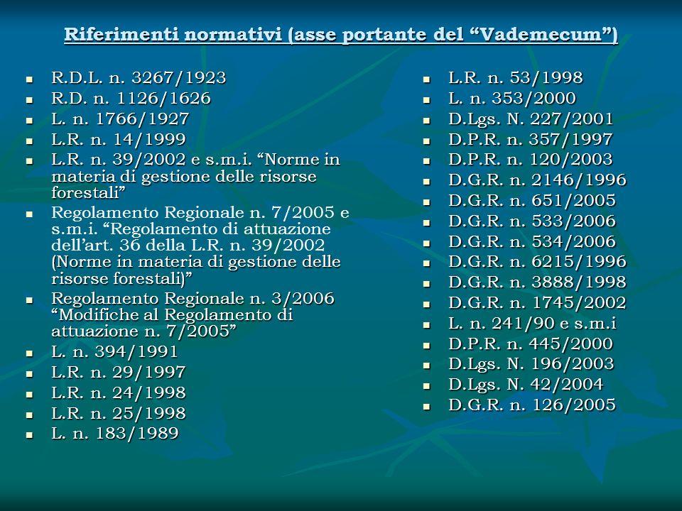 Riferimenti normativi (asse portante del Vademecum )