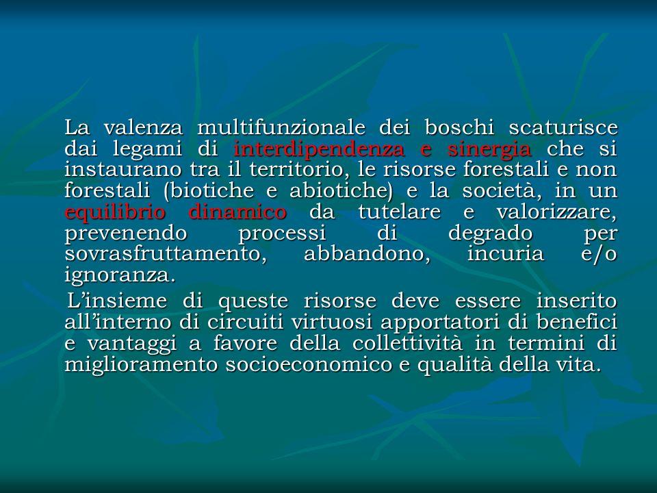 La valenza multifunzionale dei boschi scaturisce dai legami di interdipendenza e sinergia che si instaurano tra il territorio, le risorse forestali e non forestali (biotiche e abiotiche) e la società, in un equilibrio dinamico da tutelare e valorizzare, prevenendo processi di degrado per sovrasfruttamento, abbandono, incuria e/o ignoranza.