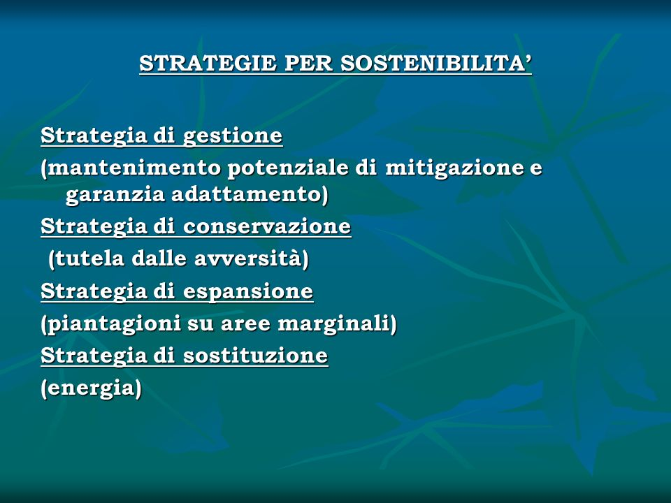 STRATEGIE PER SOSTENIBILITA'
