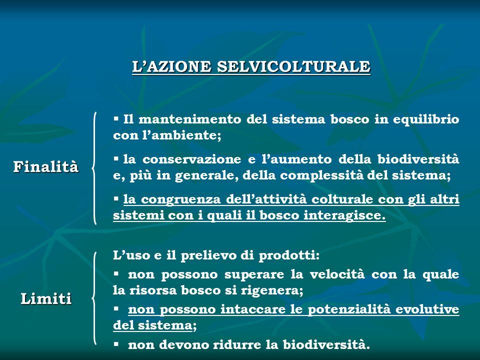 L'AZIONE SELVICOLTURALE